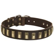 Leather Dog Collar with Awesome Brass Plates