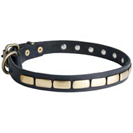 Dog Leather Collar Brass Plates 25 mm