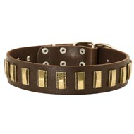 Dog Leather Collar with Shiny Plates