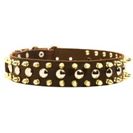 Spiked and Studded Dog Leather Collar