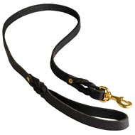 Walking Training Leather Dog Leash Braided