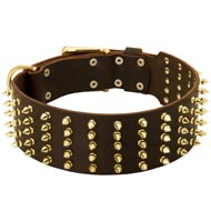 Wide Spiked Leather Dog Collar