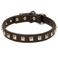 Dog Leather Collar Caterpillar Design