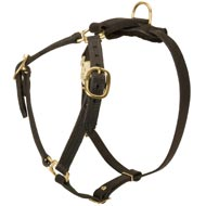Y-Shaped Leather Dog Harness for Tracking and Training