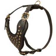 Adjustable Studded Leather Dog Harness for Fashion Walking