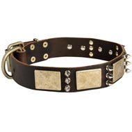 Designer War-Style Leather Dog Collar with Spikes and Plates