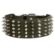 Dog Leather Collar Spiked and Studded