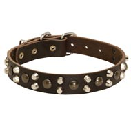 Leather Dog Collar With Studs and Pyramids