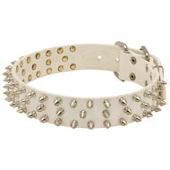Designer Spiked Leather Dog Collar for Fashionable Walking