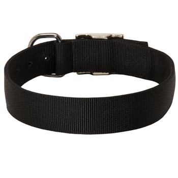 Nylon Collar for Dog Comfy Training