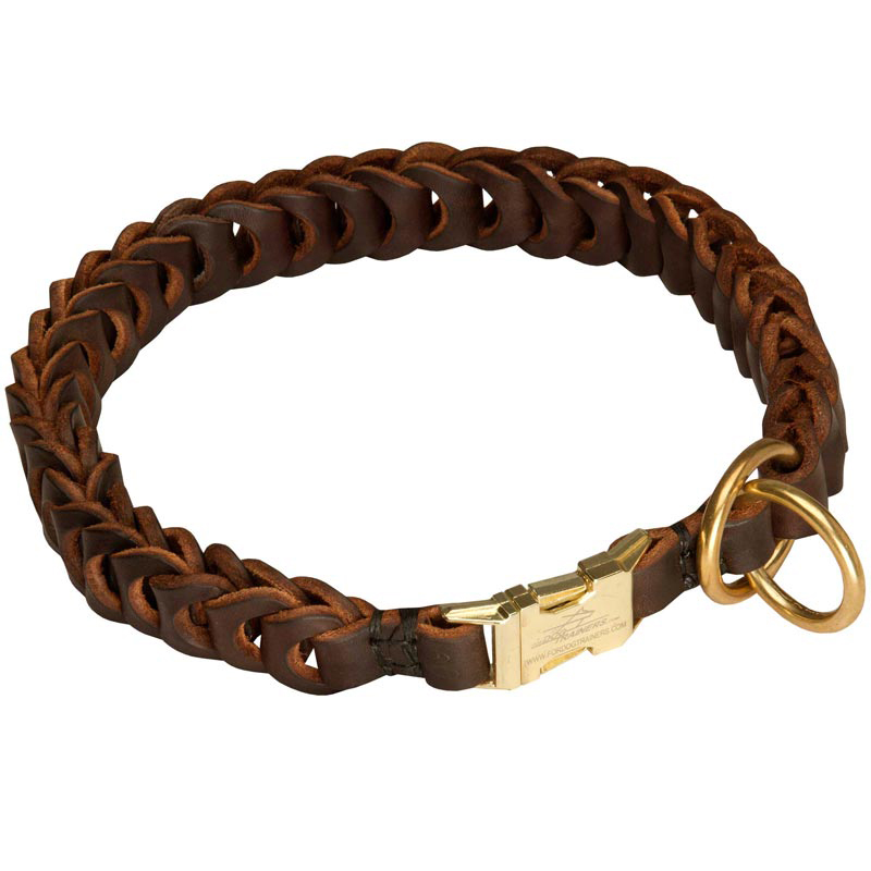 Different Kinds Of Dog Collars
