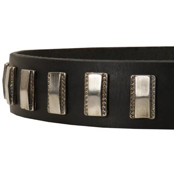 Stylish Leather Collar with Vintage Plates for Dog