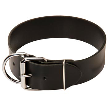 Dog Leather Collar of Extra Width