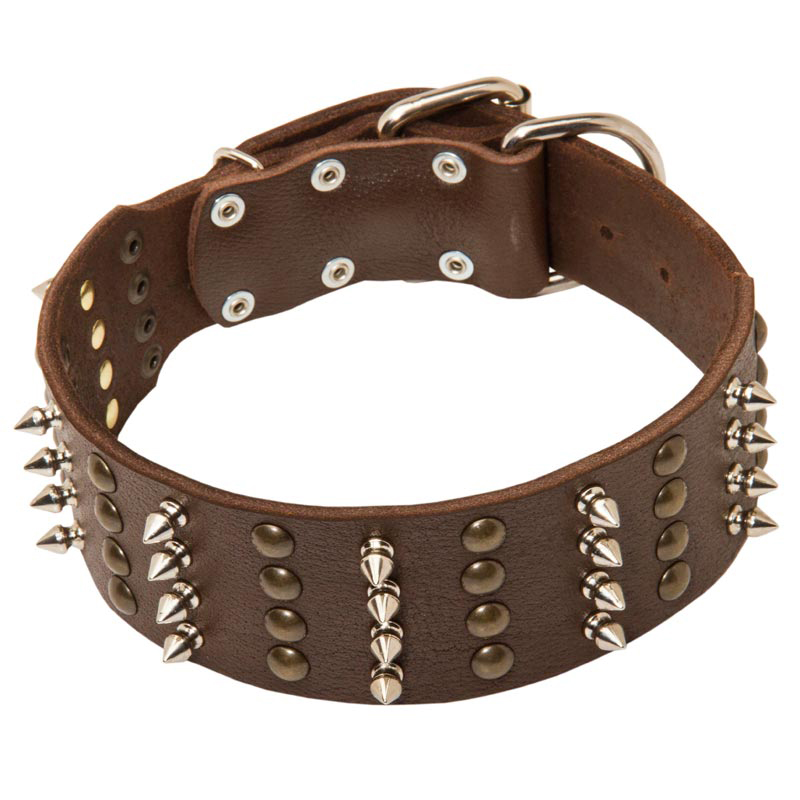 Leather Studded Dog Collar  Inch