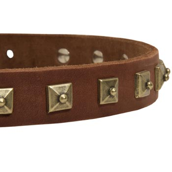 Dog Leather Collar With Square  Studs