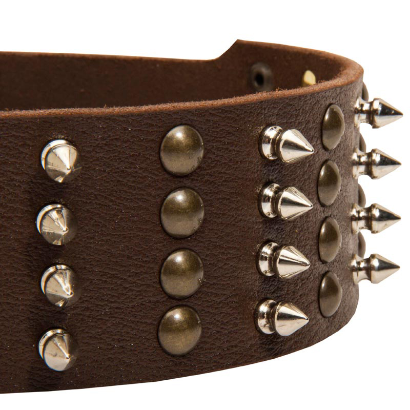 Leather Dog Collars Pet Smart