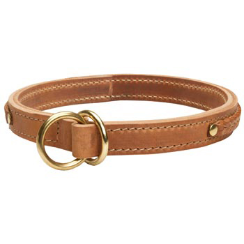 2 Ply Leather Choke Collar for Dog