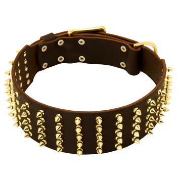 Fashionable Spiked Leather Dog Collar