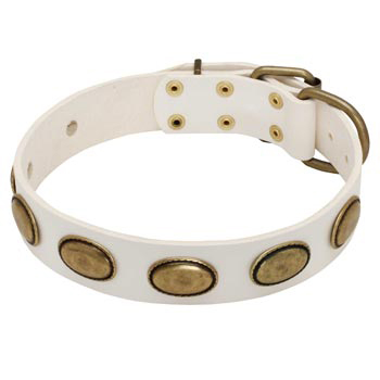 White Leather Dog Collar with Vintage Oval Plates