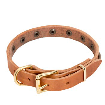 Dog Leather Collar with Studs