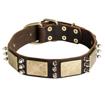 War-Style Leather Dog Collar for Dog