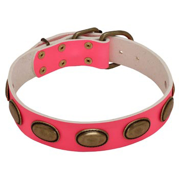Pink Leather Dog Collar for Female Dogs