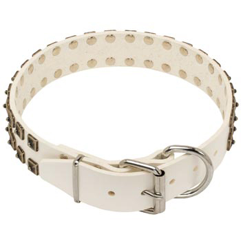 White Leather Dog Buckle Collar for Dog