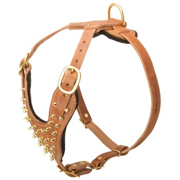 Walking Leather Harness for Dog
