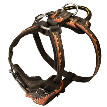 Leather Dog Harness with Handle for Dog Training