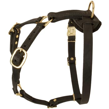 Tracking Leather Dog Harness for Dog