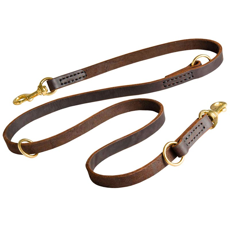 Dog Training Leashes Leather