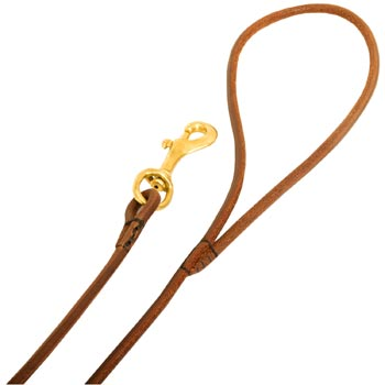 Leather Dog Leash with Comfy Round Hnadle
