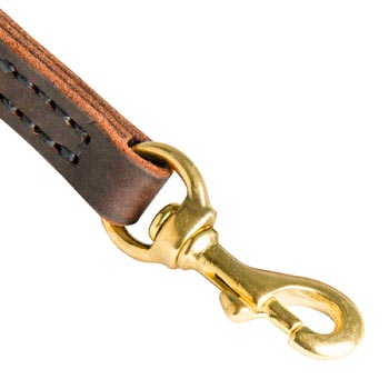 Dog Leather Leash with Brass Hardware