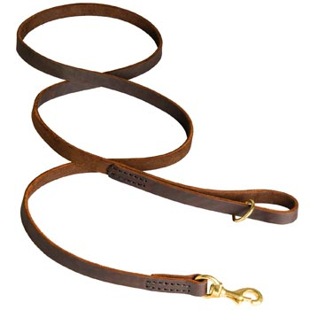 Classic Stitched Leather Dog Leash