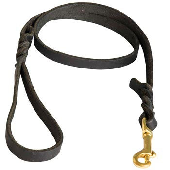 Training Leash for Dog